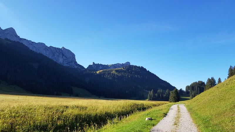 Le Chemin de Saint-Guilhem en 2019